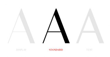 Bodoni Sans [8 Fonts]
