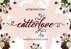 Catterlove [1 Font]